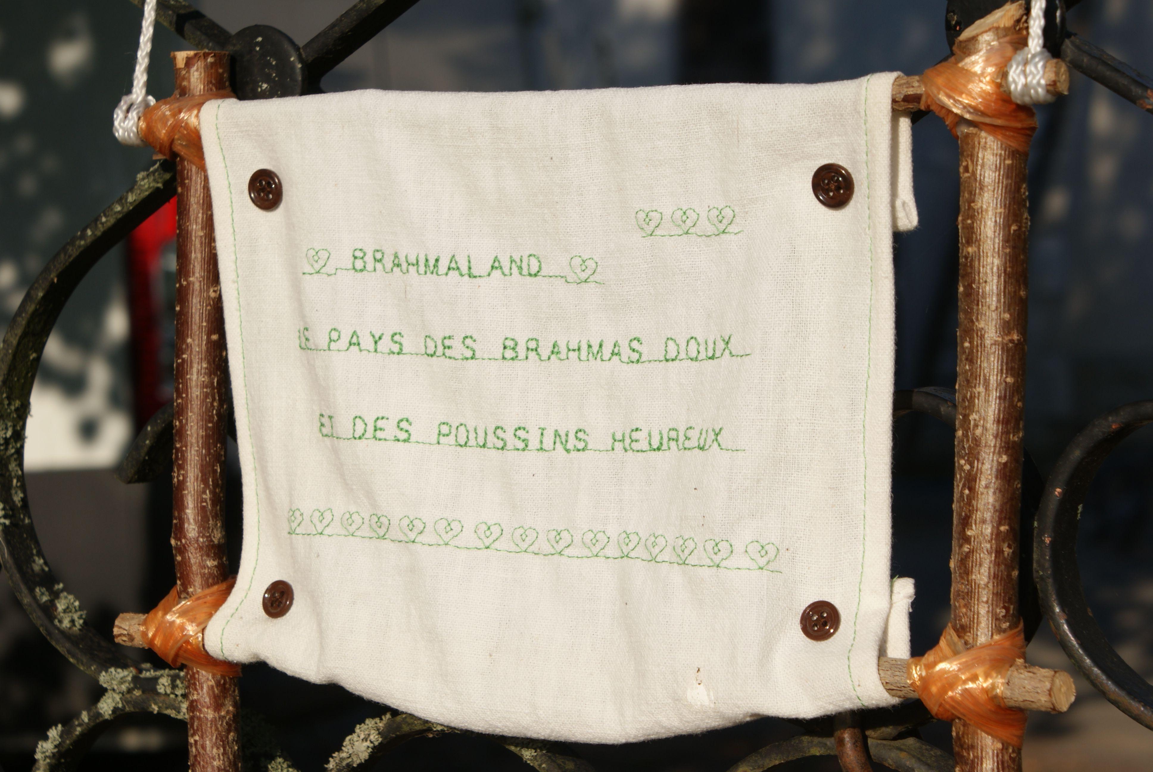 borderie et slogan de brahmaland