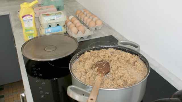 Recette protéiné de pâtée pour poules