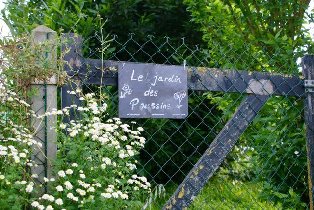 le jardin des poussins