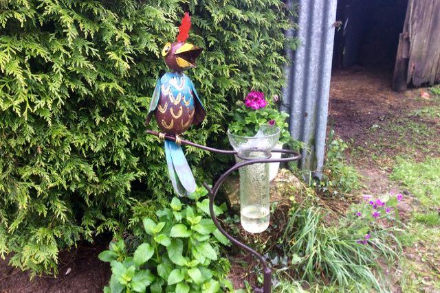 pluviomètre à Brahmaland