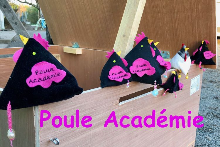 petites cocottes en tissus à l'effigie de Poule Académie, perchées sur le bord d'un poulailler neuf