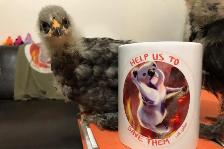 Help us to save them : mouvement caritatif pour venir en aide aux animaux sinistrés par les incendies en Australie.